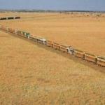 Australijskie pociągi drogowe